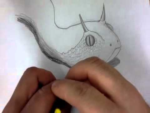 Horned Viper Drawing Horned Viper Mov