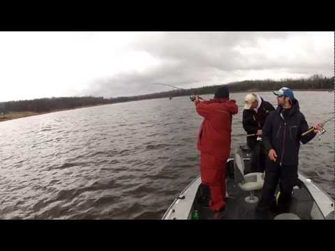Minnesota Walleye Fishing - Rainy River Spring Walleye Fishing 4-14-12 Part 1