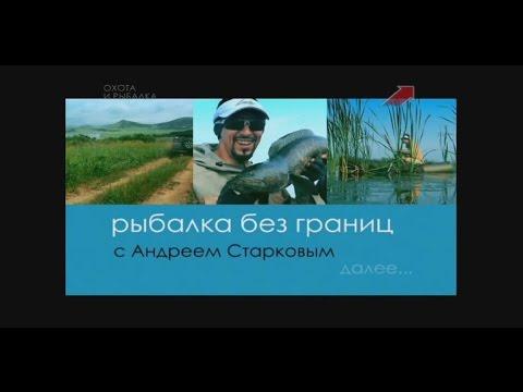 рыбалка без границ видео бесплатно