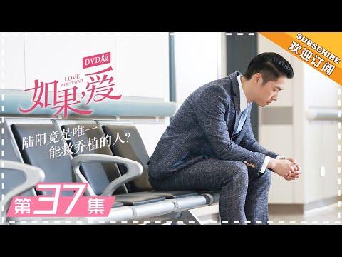DVD版 |《如果,爱》第37集:嘉玲因乔植病情未参加婚礼 Love Won't Wait EP37【芒果TV独播剧场】