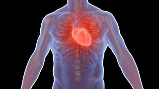 6 Easy Ways to Stop Heart Palpitations at home | How to Stop Heart Palpitations Due to Anxiety