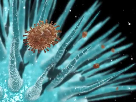 Man Made Viruses as Bio-NanoTechnology (how this new virus works)
