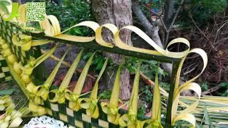 Cỗng cưới lá dừa tại Tiền Giang 12-8-2017(Phần 1)-Nhóm thắt lá dừa Bến Tre