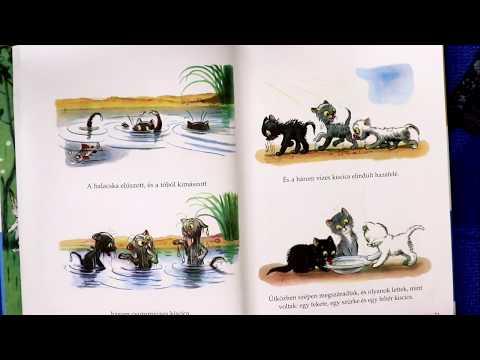 A három kiscica - Vidám mesék - meseolvasás