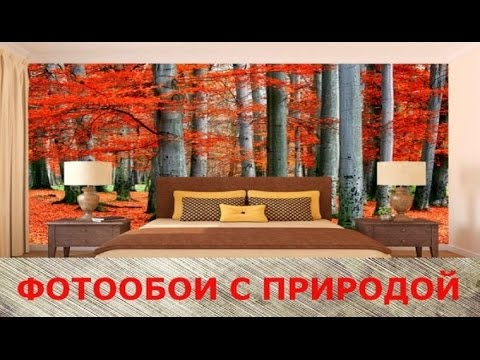 Природа в вашем доме,фотообои в интерьере
