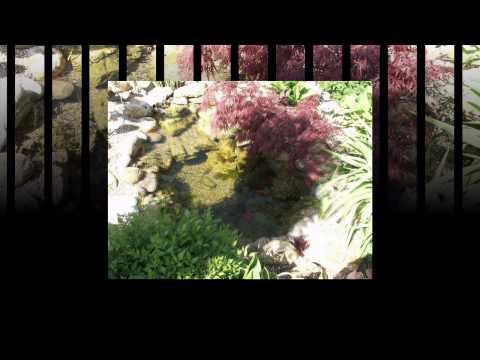 BIO-Teichbau-im Raum Steiermark-Burgenland  Bio Tó Ungarn Gartengestaltung