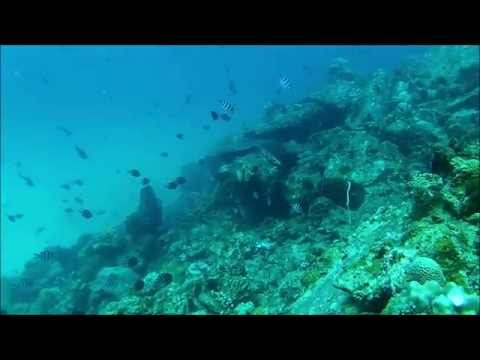 SCUBA Diving at Redang Island, Malaysia