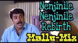 Nenjinile nenjinile Rebirth II Malayalam troll II