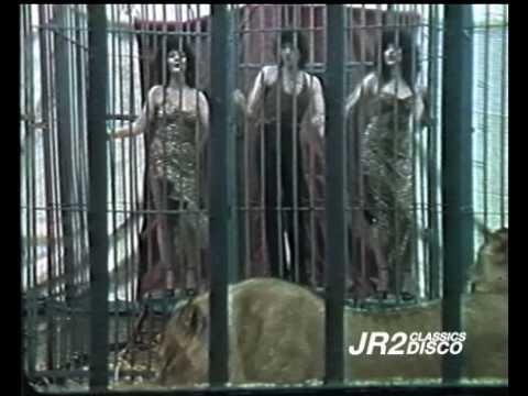 Jungle Drums - Wild Fantasy