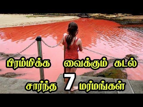 பிரம்மிக்க  வைக்கும் கடல் சார்ந்த 7 மர்மங்கள் | 7 Most Mysterious Ocean Facts in Tamil