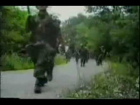 Vojska Republike Srpske (Bosnian Serb Army)