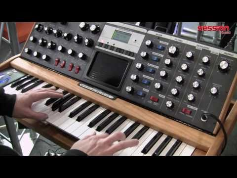 Moog MiniMoog Voyager Performance Stage Edition