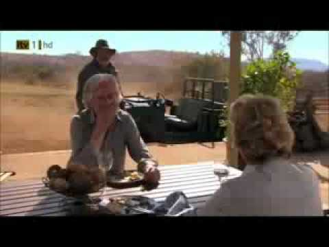 Wild At Heart Series 5 Episode 1 Part 2