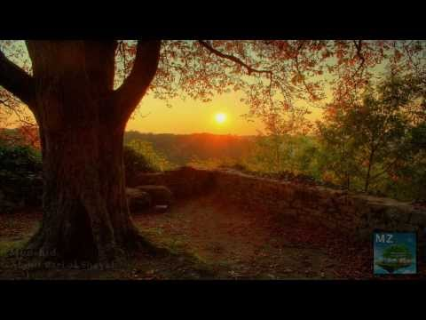 Beautiful Arabic Nasheed | نبراس النور | Abdulbari Al Shaikh video
