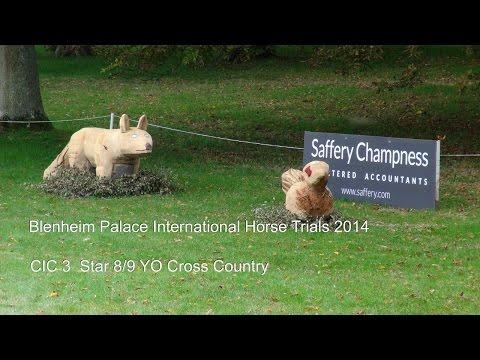 Blenheim Palace International Horse Trials 2014: CIC 3 Star X Country