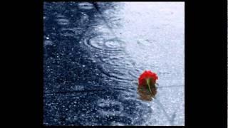 Watch Frank Sinatra Rain falling From The Skies video