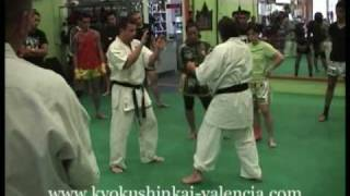 Honbu Dojo Valencia - Karate Kyokushin Instructional  - Low Kick
