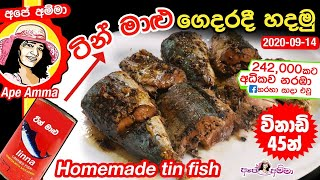 Home-made tin fish (saman tin) by Apé Amma