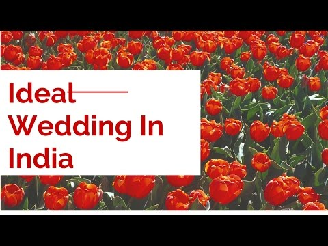Ideal Wedding In India | Abhay-Deware-Priti-Kumbhare-Wedding | News And Entertainment World