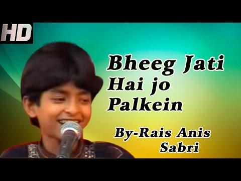 Bheeg Jati Hai Jo Palkein Kabhi Tanhai Mein By Rais Anis Sabri (qawwali Muqabla Hindi) video