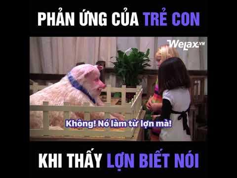 Phản ứng của trẻ con khi thấy lợn biết nói