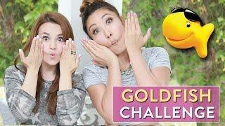 GOLDFISH CHALLENGE! w/ Cassey Ho