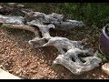 Our Driftwood Haul - Free Money