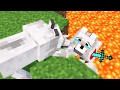 Top 5 Minecraft Life (Minecraft Animation)