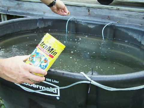 Bait fish holding tank youtube for How to make fish bait