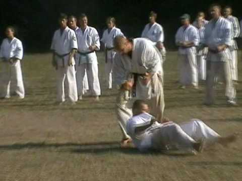 KYOKUSHIN BASIC TRAINING ULTIMATE TRUTH KARATE Image 1