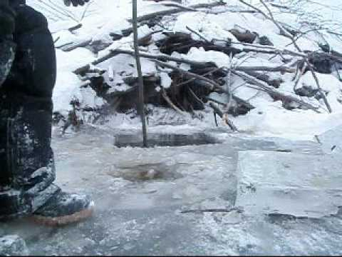 How To Trap A Beaver Under The Ice pt 1