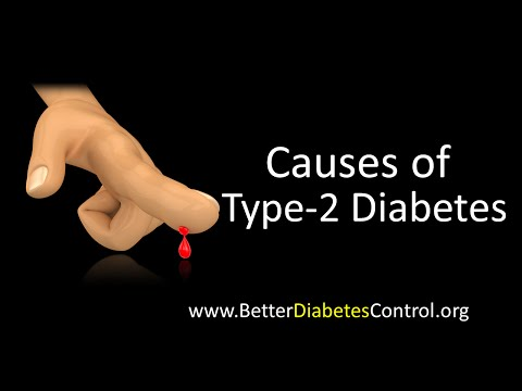 Diabetes - Causes of Type 2