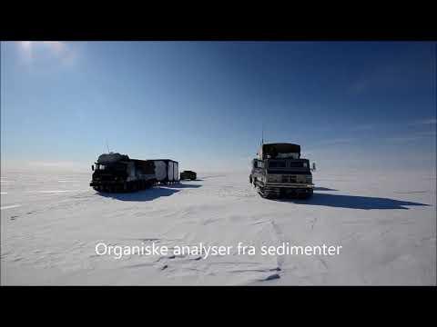 Sibir expedition