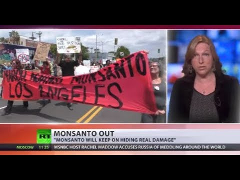 Monsanto banned from lobbying EU lawmakers after boycotting hearing