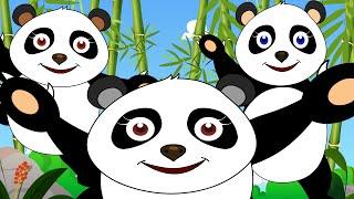 Five Little Pandas | Nursery Rhymes for Children | Kids Video