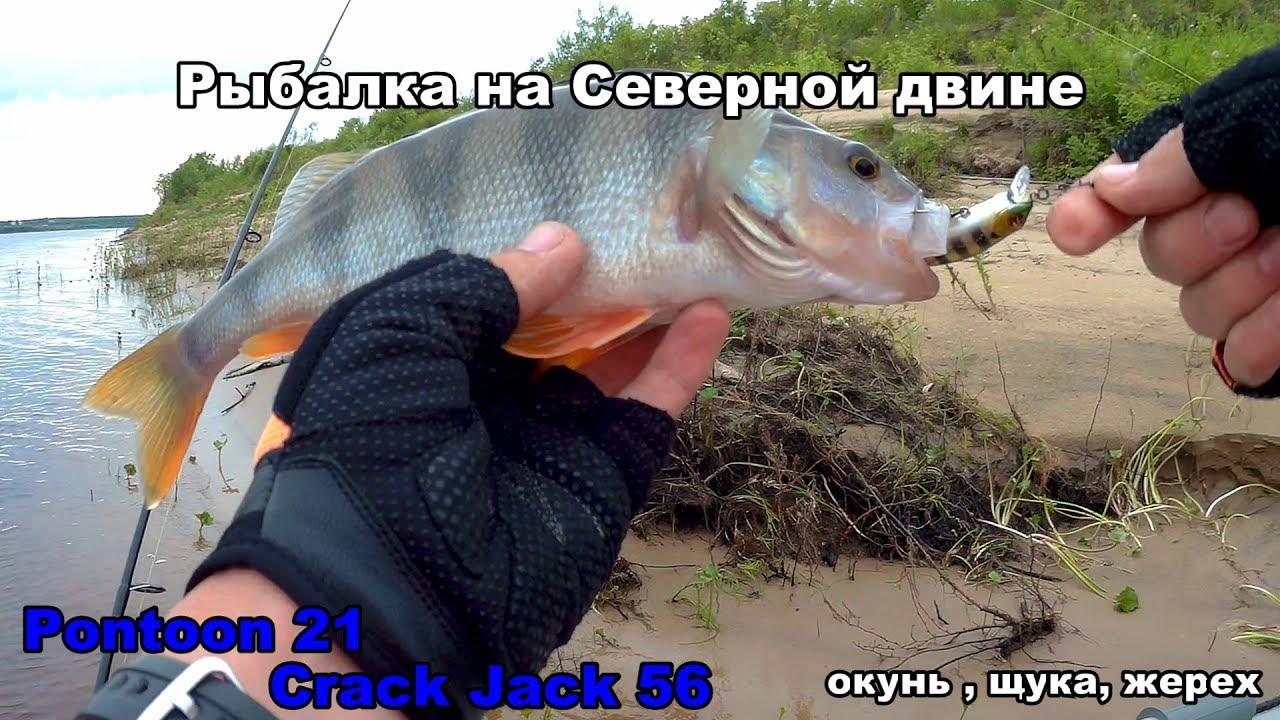а помнишь я на рыбалке ногу