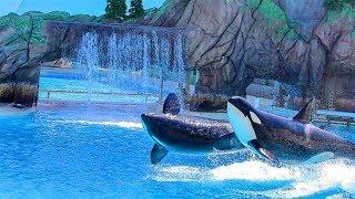 Full Orca Encounter Show (Christmas Edition dec 2017- jan 2018)/ SeaWorld San Diego.