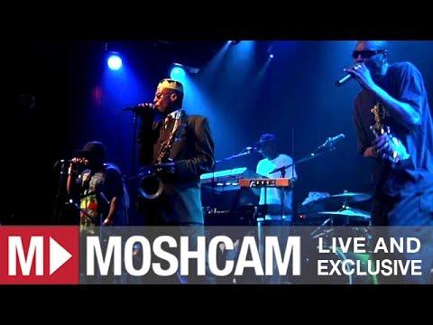 Fishbone - DUI Friday (Live @ San Francisco, 2012)