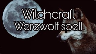 Witchcraft real spell to become a werewolf-Proven overnight results