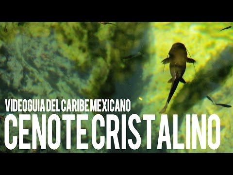 Trip In.. Cenote Cristalino
