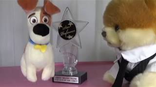 BEST DRUMMER...AWARD WINNER..JOE MAC!!!!! JOE & LISA PERFORMING!! OUTRAGEOUSLY FUNNY!!