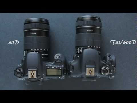 Canon 60D vs. Canon T3i/600D Comparison