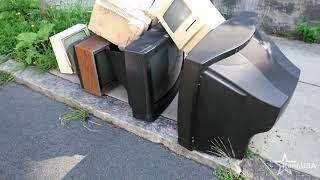 Đời Sống ở Mỹ: Đi lượm rác tình cờ gâp ông Mỹ kêu lại cho cái thùng ưóp lạnh.