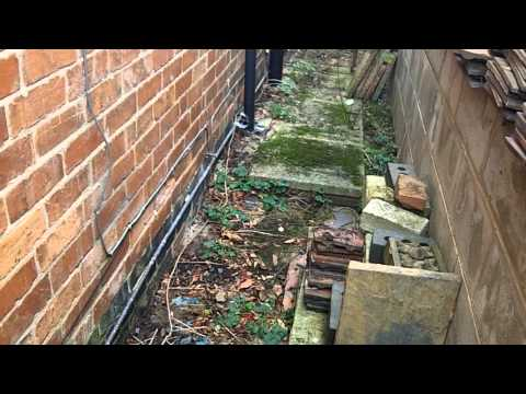 A rising damp case history - in a bone dry house.
