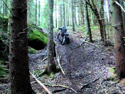 Lifan 150 Pitbike Hillclimb and roosts