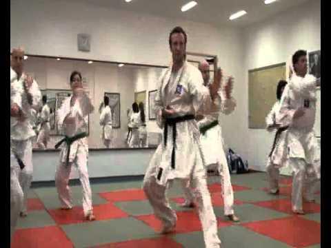 Karate Kokutsu Dachi - Shuto Uke - Mae Ashi Geri - Gyaku Zuki video