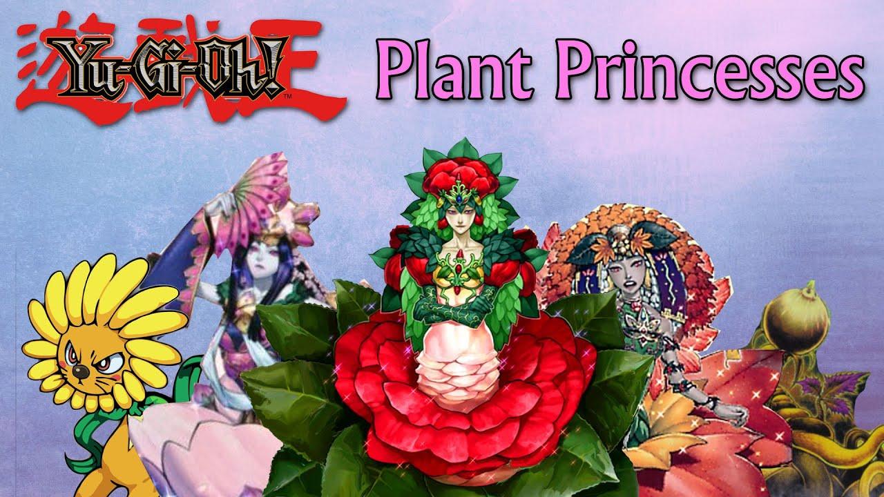Plant Princess Deck Yu-gi-oh Deck Profile Plant