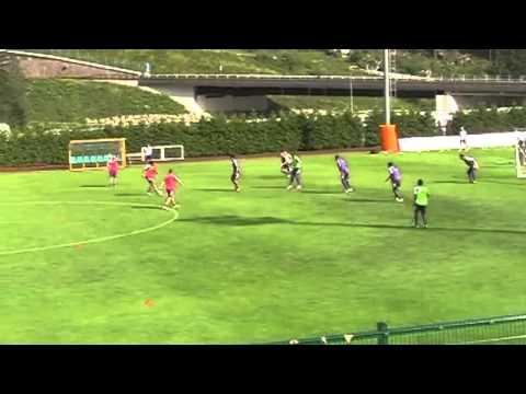 Esercitazione tattica 6x4, Fiorentina, Vincenzo Montella, es NSD n° 214, 05112014 from NewSoccerDril