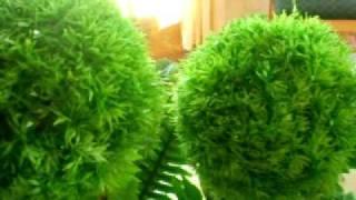 florerias plantas artificiales decorativas ojo