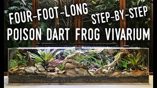 MY LARGEST VIVARIUM YET! Bringing COSTA RICA to my LIVING ROOM!
